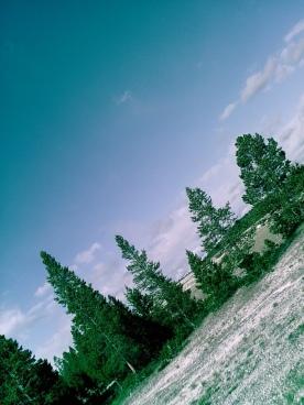thumb_SUNP0110_1024
